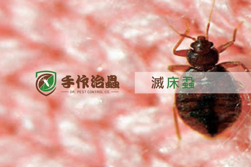 滅床蝨, 除蟲劑, 滅床蝨公司