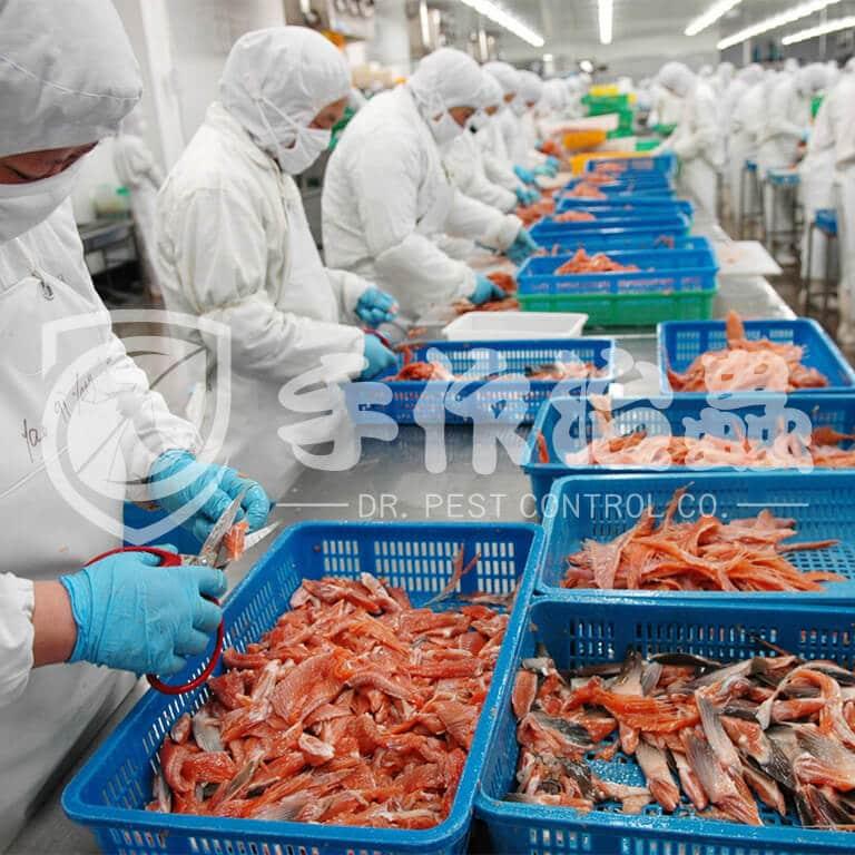 食品工廠滅蟲,食品工場滅蟻,Dr Pest食品加工業蟲害防治服務03