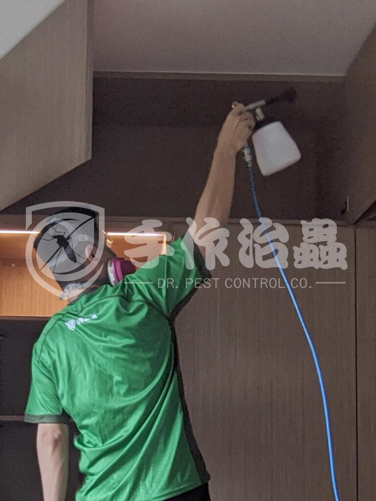 案例分享家居服務,除甲醛服務 -16